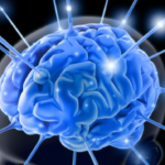 Ketosis and the Brain