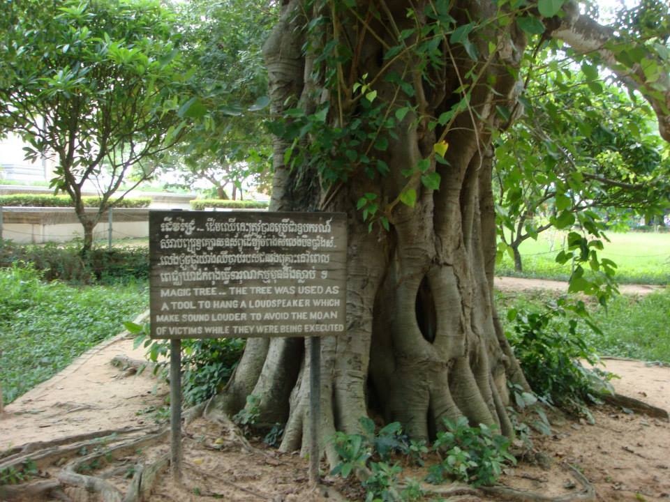 Sad remanent of the Khmer Rouge.