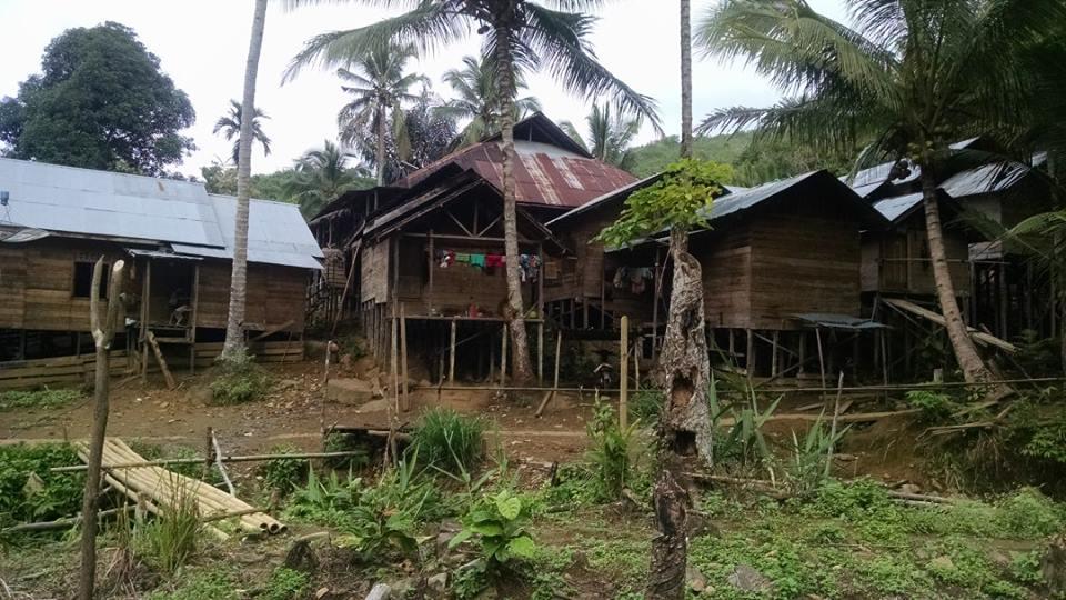 Nice homemade houses we slept in